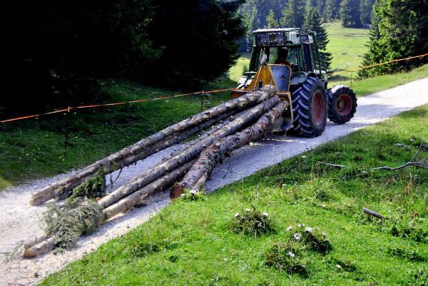 NBB mandos a distancia por radio Tecnología forestal